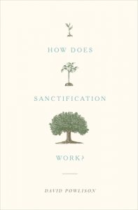 How Does Sanctification Work? David Powlison's book is a gem!
